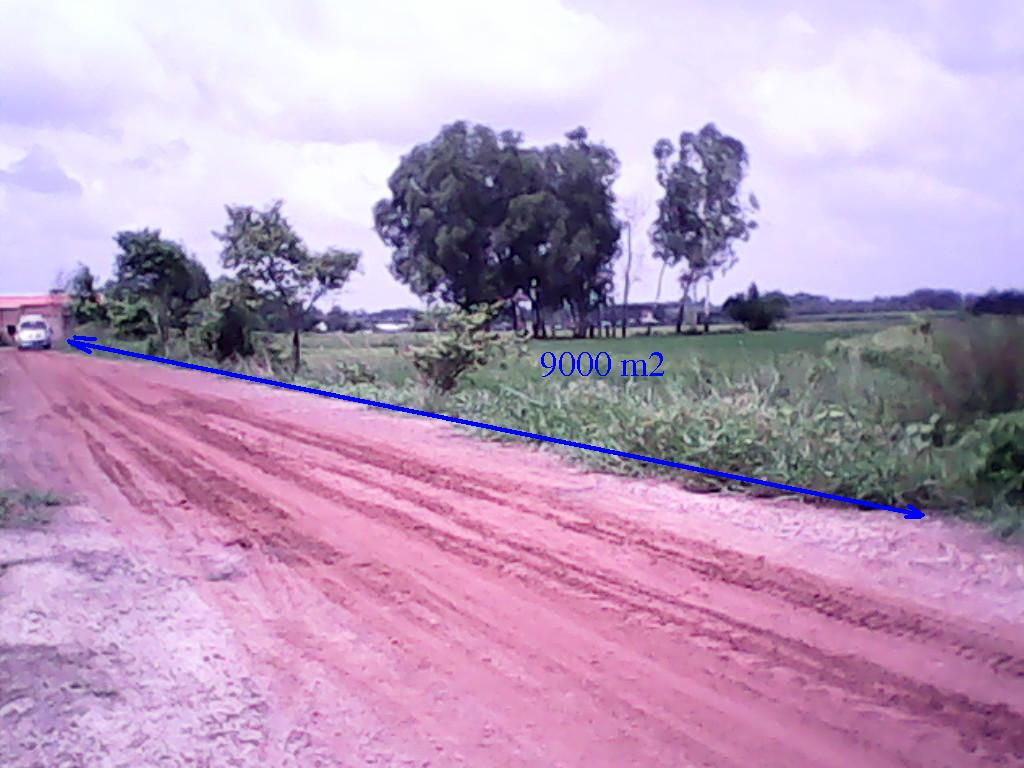 Đất rẻ Củ Chi 9000m2 giá 210N/m2(1tỷ9),(c.Lành 0974924839)