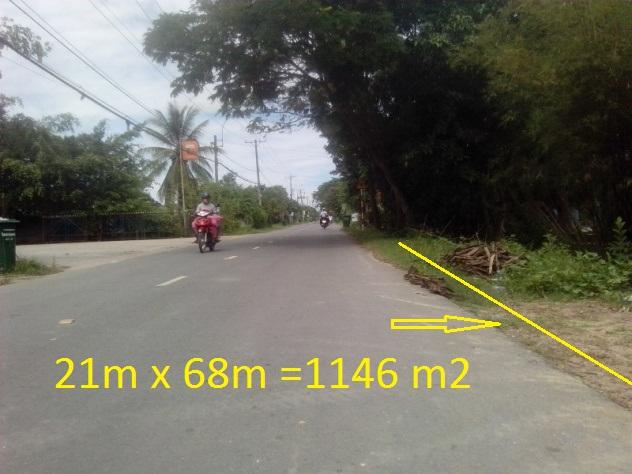 Bán 1446 m2 đất Mặt tiền TL.7 xã Thái Mỹ. huyện Củ Chi giá rẻ