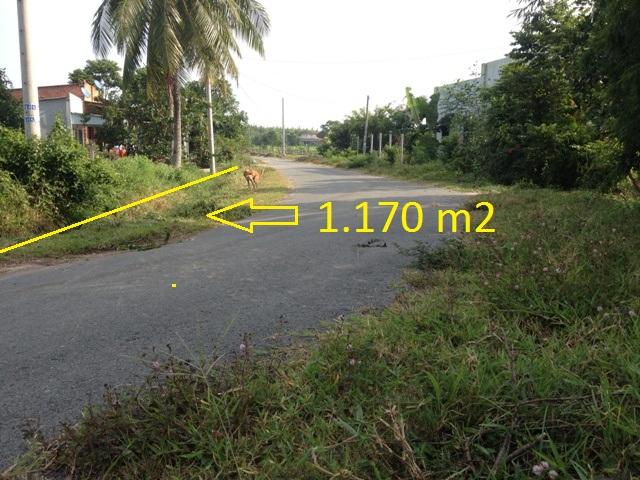 Bán Đất nhà vườn xã thái mỹ củ chi thành phố HCM 15m x 80m= 1170m2 giá 480 triệu