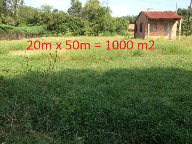 Bán đất khu dân cư Thái Mỹ Củ Chi 20x50=1.000m2 giá 430 triệu